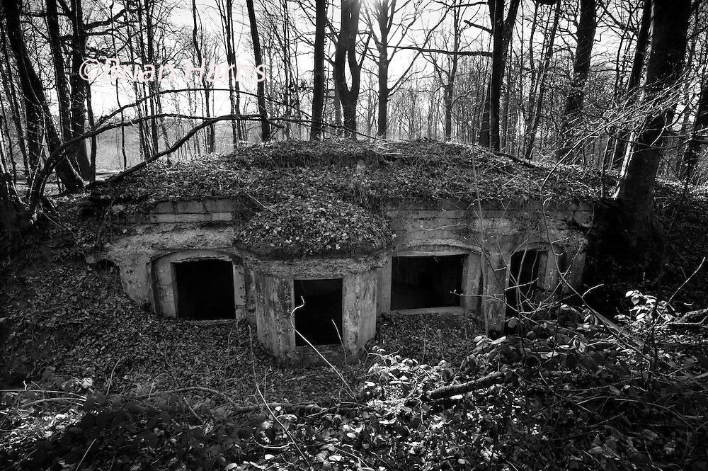Argonne Forest WW1 Meuse-Argonne Battlefield site, Abri du Kronprinz, France. March 2014<br /> <br /> The bunker in the Argonne woods used by the German Crown Prince, the Abri du Kronprinz, Crown Prince Wilhelm in 1915. The interior is disintergrating but you can still make out a tiled cooking stove.<br /> <br /> The Argonne Forest offensive, part of the final 100 days of WW1 and a major attack on the wetern side of Verdun, was the largest battle in American history up to this point and involved 1.2 million American soldiers.<br /> <br /> Caption information below from Wikipedia:<br /> The Meuse-Argonne Offensive, also known as the Maas-Argonne Offensive and the Battle of the Argonne Forest, was a part of the final Allied offensive of World War I that stretched along the entire Western Front. It was fought from September 26, 1918, until the Armistice on November 11, a total of 47 days. The battle was the largest in United States military history, involving 1.2 million American soldiers, and was one of a series of Allied attacks known as the Hundred Days Offensive, which brought the war to an end. The Meuse-Argonne was the principal engagement of the American Expeditionary Forces during the First World War.<br /> The logistical prelude to the Meuse attack was planned by then-Colonel George Marshall who managed to move US units to the front after the St. Mihiel salient fighting. The big September/October Allied breakthroughs (north, centre and south) across the length of the Hindenburg Line &ndash; including the Battle of the Argonne Forest &ndash; are now lumped together as part of what is generally remembered as the Grand Offensive (also known as the Hundred Days Offensive) by the Allies on the Western front. The Meuse-Argonne offensive also involved troops from France, while the rest of the Allies, including France, Britain and its dominion and imperial armies (mainly Canada, Australia and New Zealand), and Belgium contributed to major battles in other sectors across the whole front.<br /> <br /> The French and British armies' abil