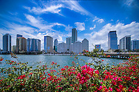 Skyline of Brickell Financial District