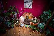 Marin City, April 6 2012 - Inside the Vallejo, a floating house previously owned by Alan Watts. The Alan Watts zen corner in her room.