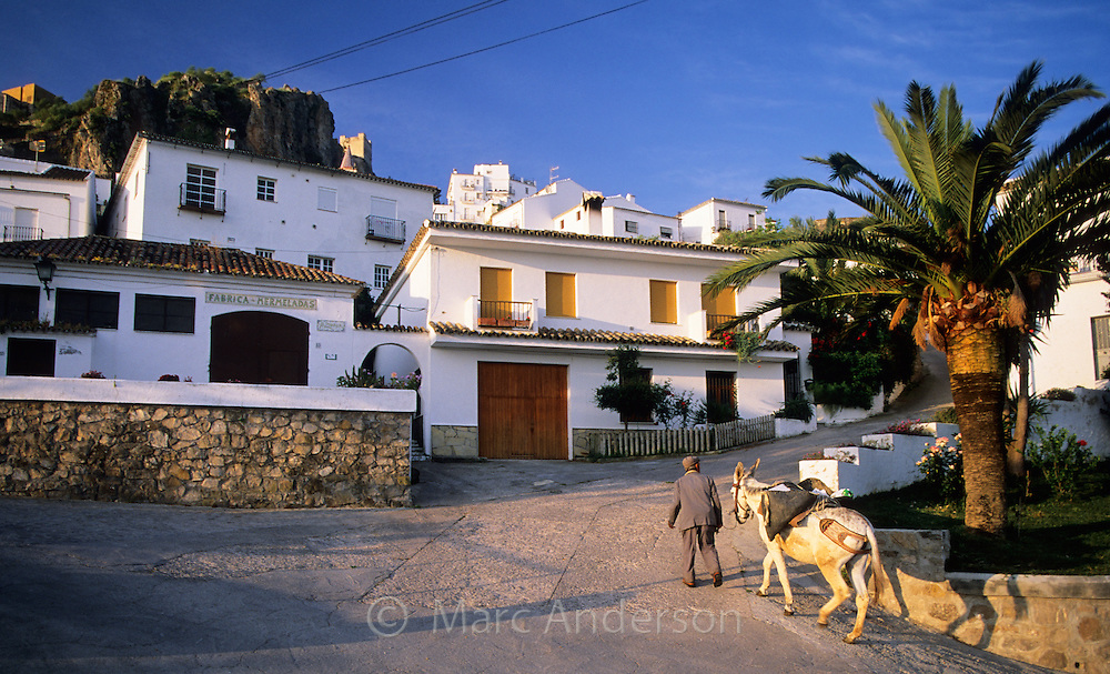 Old Man walking his donkey in Zahara de la Sierra, a typical white village (pueblo blanco) in Andalucia, Spain