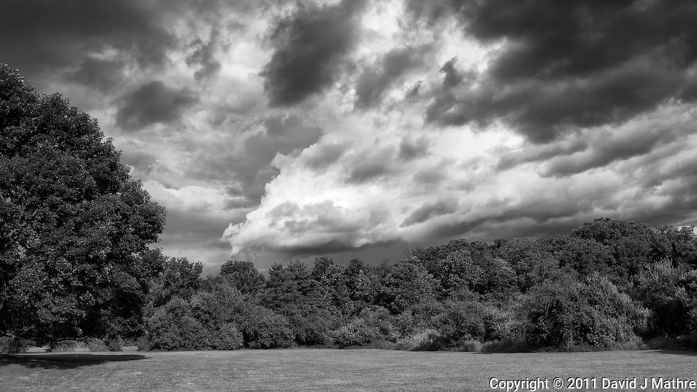 Storm Departing -- Backyard Summer Landscape. Image taken with a Leica X1 (ISO 100, 24 mm, f/5.6. 1/800 sec). Raw image processed with Capture One Pro, Nik Define, and Photoshop CS5. Converted to BW with Nik Silver Efex Pro 2.