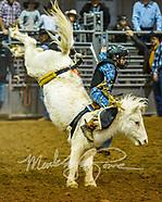 Western States Mini Bareback & Saddle Bronc Regional