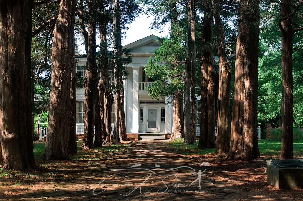 A driveway lined with cedar trees leads to author William Faulkner's home, Rowan Oak, Aug. 11, 2011, in Oxford, Mississippi. (Photo by Carmen K. Sisson)