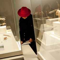 A woman with a red hat visits the 'Ice Age Art - Arrival of the modern mind' exhibition at The British Museum in London. The exhibition, curated by Jill Cook, opens in London on the 7th of February and presents masterpieces of Ice Age sculpture, ceramics, drawing and personal ornaments, created over 20,000 years ago.