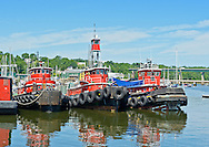 Three Red Tugs in Belfast Harbor, Maine