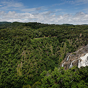 Kuranda Tour in Cairns surroundings. Kuranda is a village in the rainforest. The Barron Falls.
