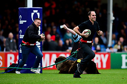 Half time Otter Challenge - Mandatory by-line: Ryan Hiscott/JMP - 12/10/2019 - RUGBY - Sandy Park - Exeter, England - Exeter Chiefs v Bristol Bears - Premiership Rugby Cup