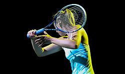 Maria Sharapova, 2014.