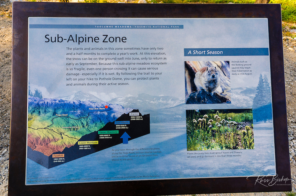 Interpretive sign, Tuolumne Meadows, Yosemite National Park, California USA