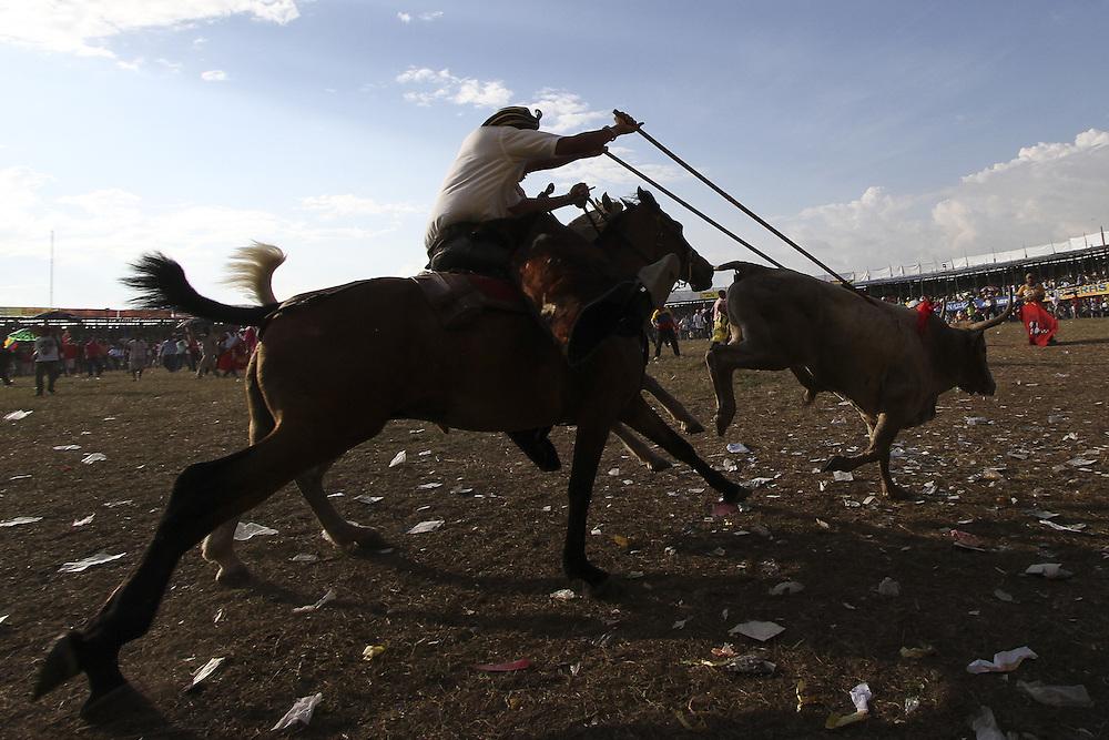 Un garrochero persigue un toro durante un corraleja en Sincelejo, Sucre, Colombia