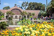 The Botanical Building at Balboa Park San Diego