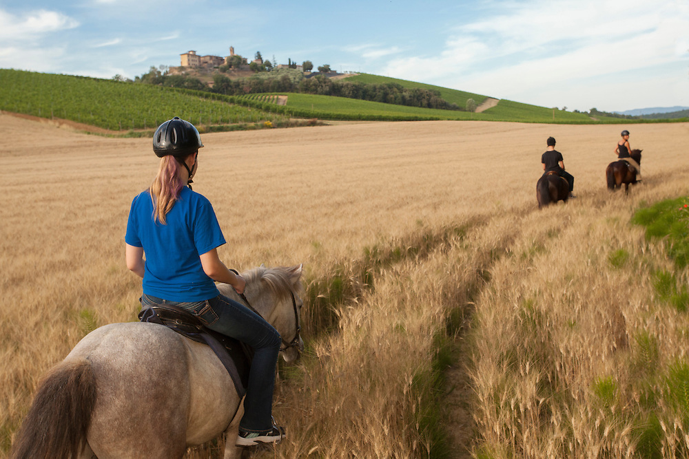 Europe, Italy, Tuscany, Volterra, people horseback riding on Icelandic Ponies with stone farm house in distance