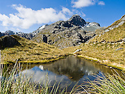 Mount Xenicus reflects in a mountain pond (tarn) on the Routeburn Track, Mount Aspiring National Park, South Island, New Zealand. In 1990, UNESCO honored Te Wahipounamu - South West New Zealand as a World Heritage Area.