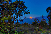 Moonset over Mauna Loa, Island of Hawaii