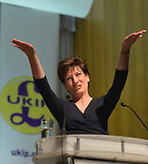 © Licensed to London News Pictures. 23/03/2013. Exeter, UK . Eastleigh Candidate Diane James talks about her experience. The UK Independence Party (UKIP) 2013 Spring Conference is held at the Great Hall, Exeter University today, Saturday 23rd March 2013. Support for the party is rising after success in the recent Eastleigh by-election, where UKIP came second behind the Liberal Democrats. Photo credit : Stephen Simpson/LNP
