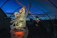 Halloween, North Fork, NY
