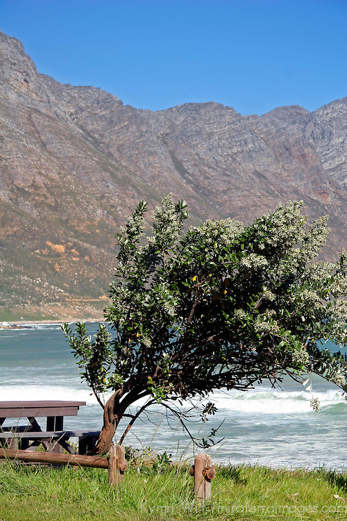 Africa, South Africa, Hermanus. Picnic spot along the Whale Coast ddrive near Hermanus.
