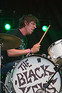 The Black Keys perform during Lollapalooza 2005 in Chicago's Grant Park.