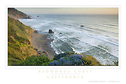 Redwoods Coast California Poster #44478