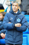 Chris Hughton Manager of Brighton and Hove Albion during the Sky Bet Championship Playoff Semi Final First Leg at Hillsborough, Sheffield<br /> Picture by Richard Land/Focus Images Ltd +44 7713 507003<br /> 13/05/2016