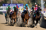 Longines Breeders' Cup Distaff (Race 9) (Dirt) <br /> November 3, 2018: Monomoy Girl #11, ridden by Florent Geroux, wins the Longines Breeders' Cup Distaff on Breeders' Cup World Championship Saturday at Churchill Downs on November 3, 2018 in Louisville, Kentucky.