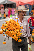 A man carries marigolds to decorate a gravesite of a family member for the Day of the Dead festival October 31, 2017 in Tzintzuntzan, Michoacan, Mexico.
