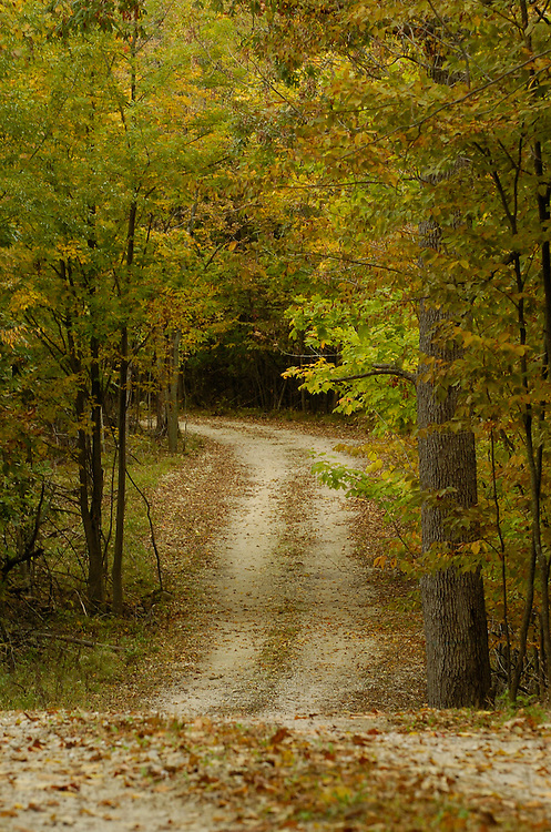 Fall scene in the Wisconsin countryside. (Photo by Sam Lucero)
