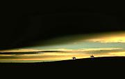 Horse on hillside at sunset, Arthur County, Nebraska