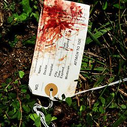 Toe tag at the scene of a quadruple fatal car crash.