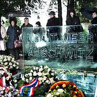 Nederland, Amsterdam , 27 januari 2013..Auschwitzherdenking...De bevrijding van concentratiekamp Auschwitz-Birkenau (27 januari 1945) wordt herdacht op zondag 27 januari 2013 in het Wertheimpark..Jaarlijks wordt, op de laatste zondag van januari, de bevrijding van het concentratiekamp Auschwitz-Birkenau (27 januari 1945), herdacht. Daarnaast worden de Jizkor- en Kaddishgebeden gezegd en er wordt zigeunermuziek gespeeld. Hierna is er voor particulieren en organisaties gelegenheid hun kransen en bloemen te leggen bij het monument...The liberation of Auschwitz-Birkenau (27 January 1945) was commemorated on Sunday, January 27, 2013 in the Wertheim Park in Amsterdam.
