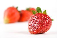 Studio shot of strawberries on white background