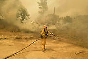 June 20, 2016 - Duarte, California, U.S. - Los Angeles County firefighters work to extinguish flames burning a horse stable off Fish Canyon Rd Monday afternoon as the Fish Fire burned over 1400 acres. ...The Fish Fire burns above Duarte and Los Angeles County. The Reservoir Fire also started nearby during record heat in the Southwest. The fire was 1,400 acres at 2:50pm.<br /> ©Exclusivepix Media