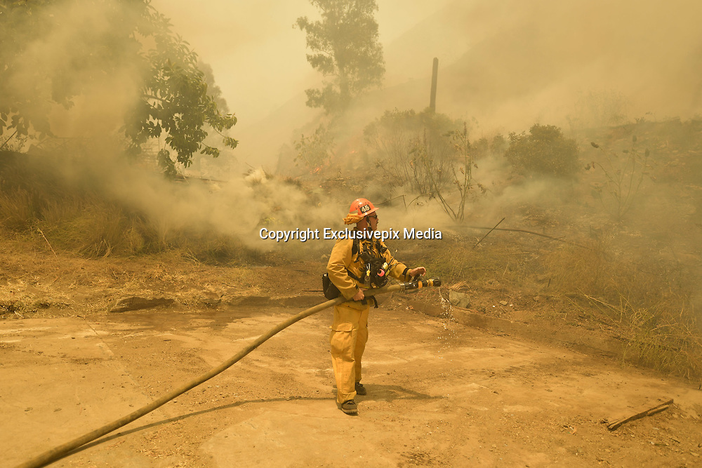 June 20, 2016 - Duarte, California, U.S. - Los Angeles County firefighters work to extinguish flames burning a horse stable off Fish Canyon Rd Monday afternoon as the Fish Fire burned over 1400 acres. ...The Fish Fire burns above Duarte and Los Angeles County. The Reservoir Fire also started nearby during record heat in the Southwest. The fire was 1,400 acres at 2:50pm.<br /> &copy;Exclusivepix Media