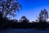 Line up of Mercury (above trees), Venus (brightest) and Saturn (upper left of Venus) at dawn, Dec 6, 2012 from Coonabrarabran, Australia. Ecliptic rises from right to left here in southern hemisphere. The 3 planets were almost equally spaced. A camera-on-tripod shot with Canon 60D and 10-22mm lens at 22mm for 1.3 seconds at f/3.5 and ISO 100. Mercury is almost lost in the twilight glow.