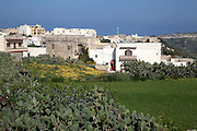 Gozo Ggantija temples