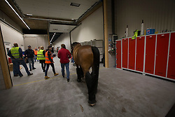 Isabell Werth's, (GER), El Santo NRW <br /> Departure of the horses to the World Cup Finals in Las Vegas from Schiphol - Amsterdam 2015.<br />  © Hippo Foto - Dirk Caremans