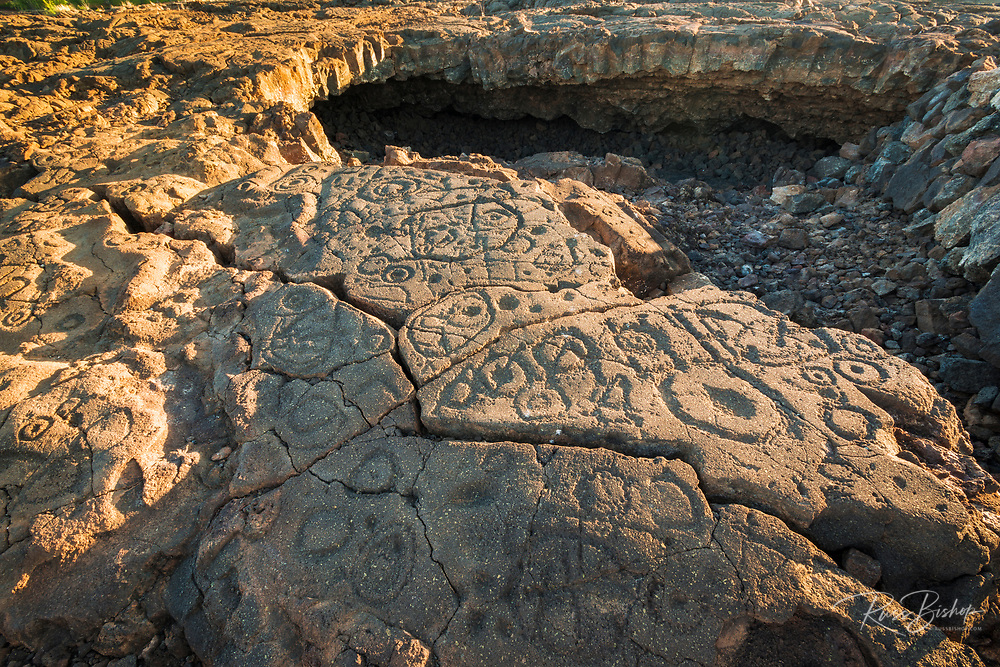 Hawaiian petroglyphs on the Kings Trail at Waikoloa, Kohala Coast, The Big Island, Hawaii USA
