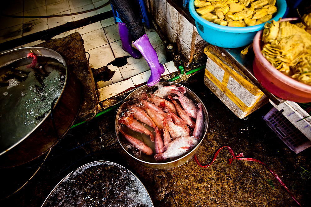 Local redfish in a tank at a wet market in Hanoi, Vietnam.