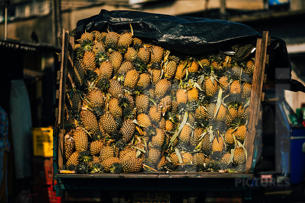 A truck filled with pineapples at the wholesale market, Colombo, Sri Lanka, Asia