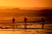 People on the beach  at sunset in  Silhouette