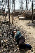 A woman lies on a pile of sticks as she takes a rest in a small village in Henan.