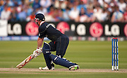 Paul Collingwood out lbw during the ICC World Twenty20 Cup match between India and England at Lord's. Photo © Graham Morris (Tel: +44(0)20 8969 4192 Email: sales@cricketpix.com)