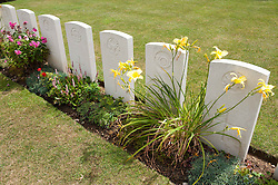 War Graves in Military Cemetary, Tourgeville, Normandy, France<br /> <br /> (c) Andrew Wilson | Edinburgh Elite media