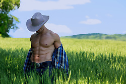 muscular cowboy removing his shirt outdoors in a field