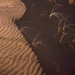 Sand patterns at the Kelso Sand Dunes. Mojave National Preserve, CA.