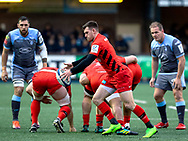 Ben Spencer of Saracens puts up a box kick<br /> <br /> Photographer Simon King/Replay Images<br /> <br /> European Rugby Champions Cup Round 4 - Cardiff Blues v Saracens - Saturday 15th December 2018 - Cardiff Arms Park - Cardiff<br /> <br /> World Copyright © Replay Images . All rights reserved. info@replayimages.co.uk - http://replayimages.co.uk