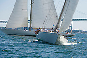 W Class White Wings and Wild Horses racing at the Museum of Yachting Classic Yacht Regatta