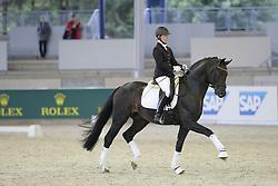 Reiten, Pferdesport, Schaubild, Florestan<br /> Aachen - Europameisterschaften 2015<br /> Zuchttag<br /> © www.sportfotos-lafrentz.de/Stefan Lafrentz