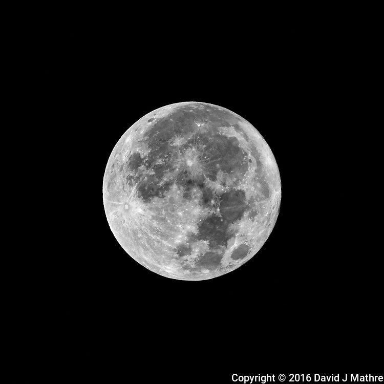 Full Moon. Autumn Nature in New Jersey. Image taken with a Nikon 1 V3  camera and 70-300 mm VR lens (ISO 200, 300 mm, f/16, 1/200 sec).