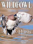 Wildfowl, Dec 2010